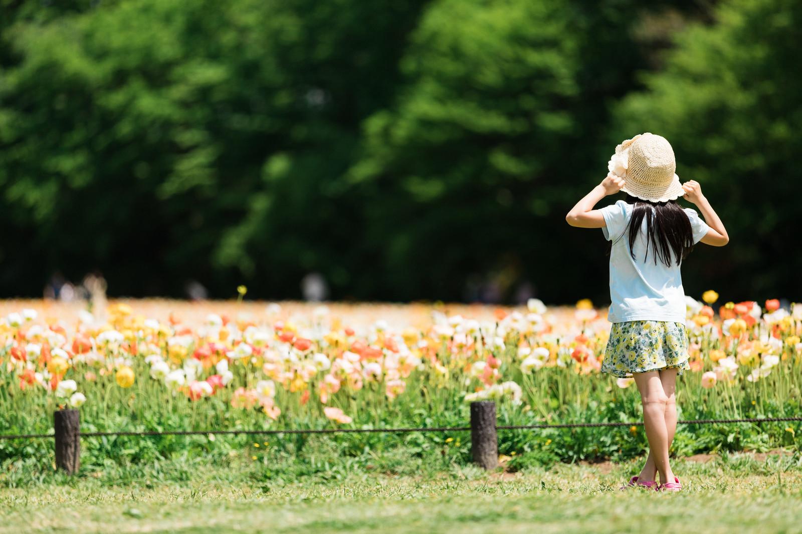 お花畑を見る少女