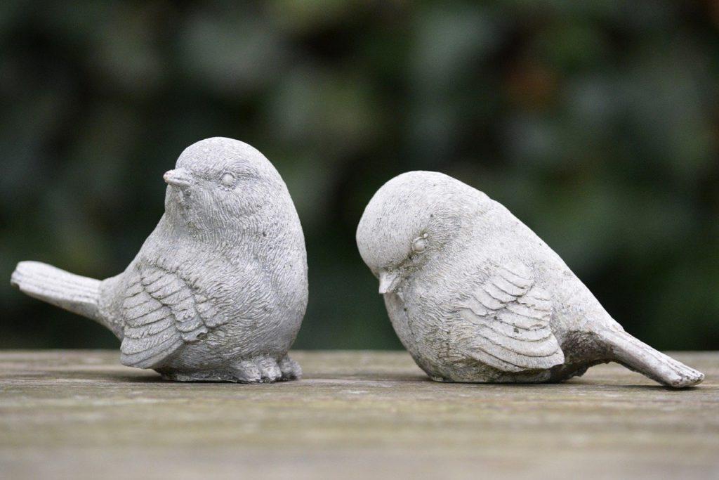 そっぽを向かれる鳥