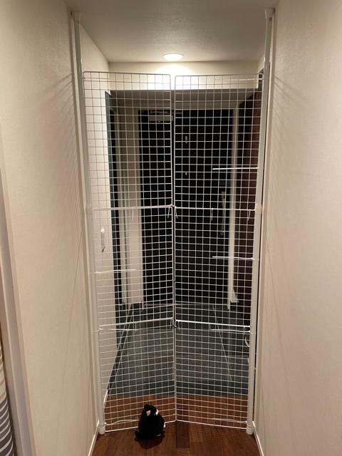 猫の脱走防止柵を玄関に