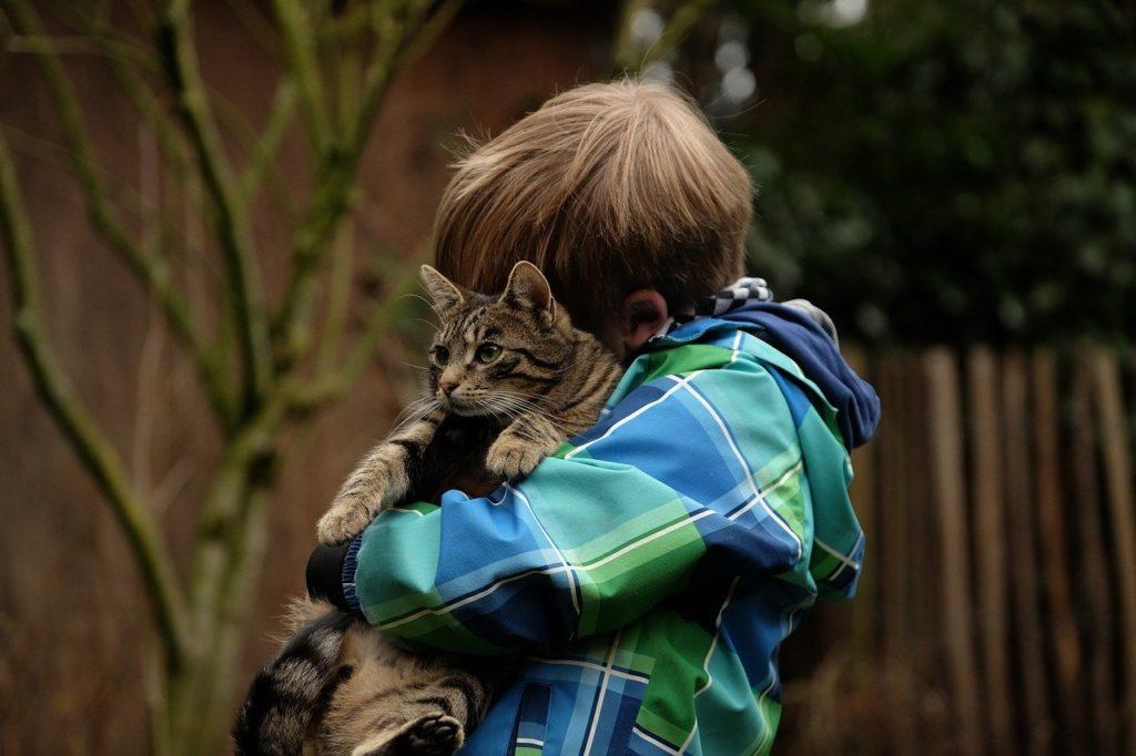 猫を抱っこする少年