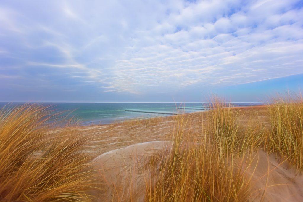 海と風に揺れる緑